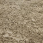 Quartzite Strata Texture